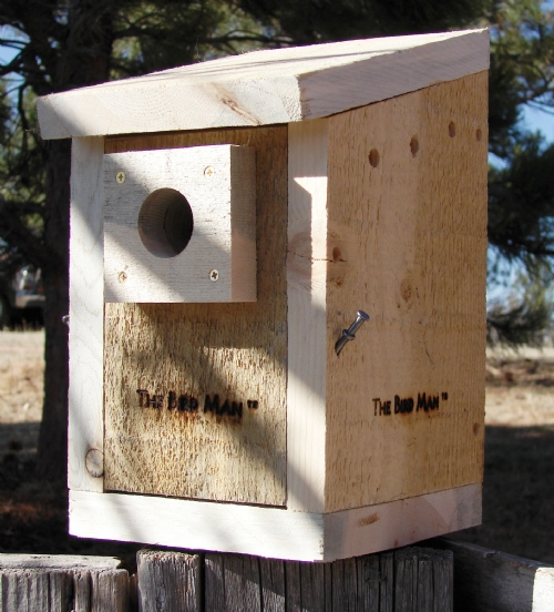 how to build a swallow bird house
