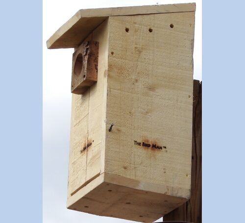 Kestrel Nesting Box