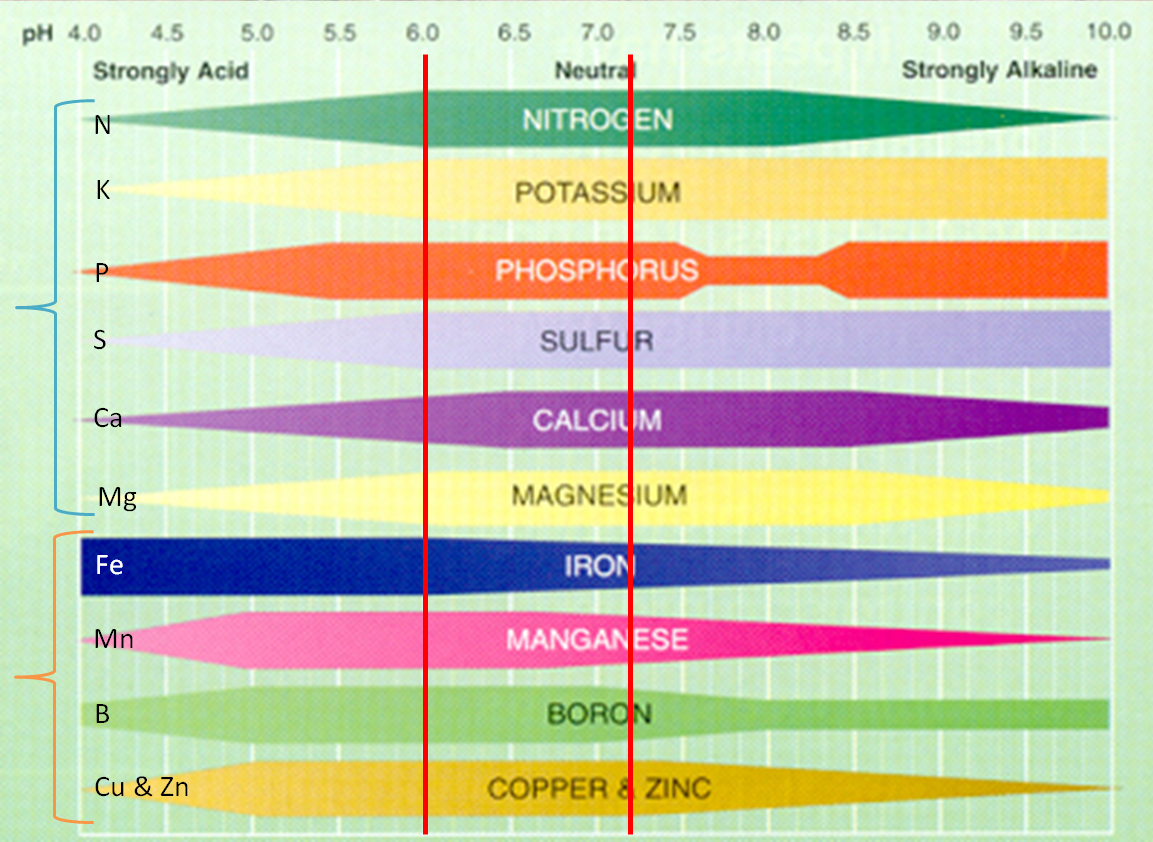 Gardening soil and the importance of soil ph for maximum for T and t soils