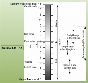 importance of soil ph